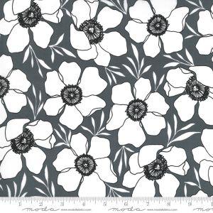 Moda Fabrics Illustrations Moody Florals grafit